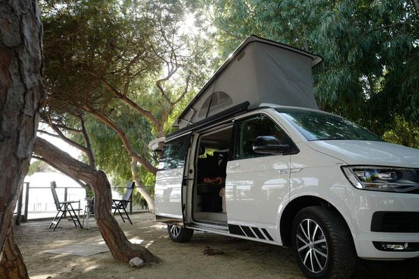 Bulli auf dem Campingplatz